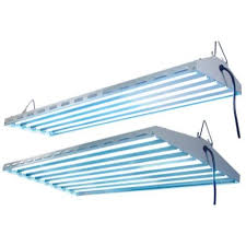 t8 fluorescent grow lights iron