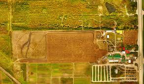 Siegels Pumpkin Farm by Siegel U0027s Cottonwood Farm Enjoy Illinois