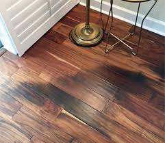 Wood Floor Cupping In Winter by 74 Best Wood Floors Gone Wrong Images On Pinterest Wood Flooring