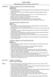 Download Internal Communication Resume Sample As Image File