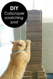 best 25 diy cat scratching post ideas only on pinterest cat