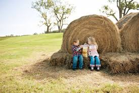 Elgin Christmas Tree Farm Facebook by What Are You Doing The Long Weekend With The Kids Oct 6 9