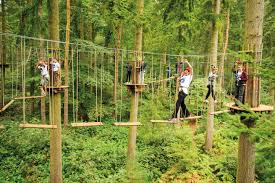Pumpkin Patch Kiln Mississippi by Win A Chance To Experience Fall Up High In The Treetops At Go Ape