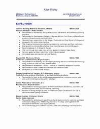 Graphic Design Resume Examples New It Awesome