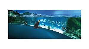 l aquarium de la rochelle site officiel du tourisme en