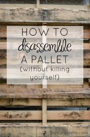 how to disassemble a pallet without killing yourself so helpful