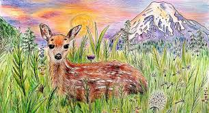 Original Colored Pencil Drawing Mountain Deer Animal Art Via Nature