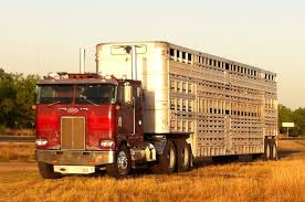 Cow Trucks | Moo-moo Haulers(cow Trucks) | Pinterest | Cow Makoatruckinghuiup3jpg Greycup2018 Hash Tags Deskgram Santa Maria Ca Illegal Trucking Youtube Truflickss Favorite Flickr Photos Picssr Food Trucks Orlando Where To Find Food In Grey Truck Stock Photos Images Alamy Caltrux March 2017l By Jim Beach Issuu China Need Freight Shipping Port Operator Says Longshore Workers Arent Speeding Up As Hanjin I5 California Williams Red Bluff Pt 4 Allychris