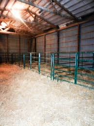Dawson Cattle Company: Show Cattle Knowledge.... Around The Farm Scissors Creek Cattle Company The Beutler Family Bench Design Hay Barn Plans Shed Heifer Development Way View Onduty Horse Csavvycom We Know Working Horses Katefairlie Kate Fairlie Kims County Line Cribs Aka Sheds Enduragate Setup Demstration For Calving Youtube Portable Calving Beef Facilities Pinterest Barn 332014 Calving2014 January 2014 Life On A Bc Ranch Slate Architecture Boots Heels Renovated Area