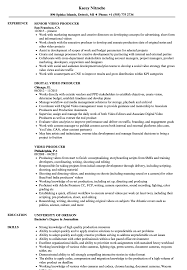 Video Producer Resume