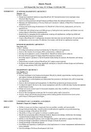 Download Sharepoint Architect Resume Sample As Image File