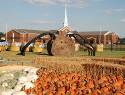 Pumpkin Patch Nashville Area by A Perfect Fall Day On A Tennessee Farm Tennessee Vacation