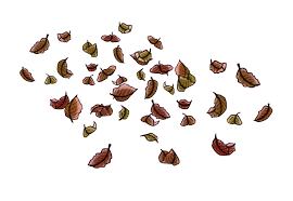 they have leaves or petals falling I decided that I would draw many individual leaves in the same art style and then use After Effects to animate them