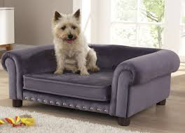 Wayfair Dog Beds by Dog Beds Wayfair Co Uk