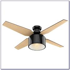 Hunter Contempo Ceiling Fan by Hunter Flush Mount Ceiling Fans Klyazma 42 Inch Fan With Light