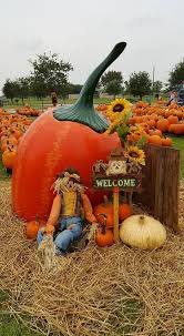 Pumpkin Patch Houston Tx Area by Pearland Events Pumpkin Patch