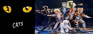 cats on broadway a midsummer s cats the broadway musical