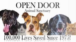 Open Door Animal Sanctuary 2016 Rescues