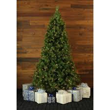Shop Fraser Hill Farm 10 Foot Canyon Pine Christmas Tree With Smart String Lighting