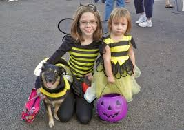 Halloween Express San Diego by Halloween Events In And Around Oceanside Visit Oceanside