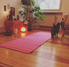 This Glowingly Warm Yoga Space With A Happy Little Cat