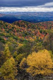 Pumpkin House Kenova Wv 2016 by Best 25 Where Is West Virginia Ideas On Pinterest Recipe For