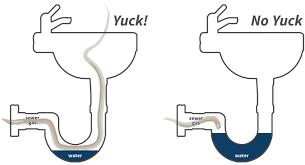 Bathtub Drain Trap Diagram by 19 Bathtub Plumbing Diagram Sink Drain Into Toilet Drain