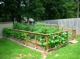 Garden Design With Raised Bed Vegetable Made Wall