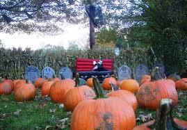 Central Wisconsin Pumpkin Patches by Ne Corn Mazes Festivals
