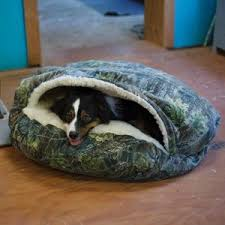 accessories fluffy pet accessories ideas with cozy cave dog bed