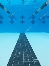 Lanes Of A Pool Seen From Under The Surface Photo By Wollwerth