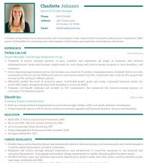 Photo Resume Templates Professional CV Formats