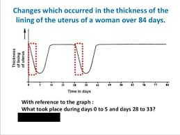 Thick Uterine Lining Shedding During Period by Biology Form 5 Chapter 4 4 1d Menstrual Cycle