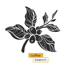 Download Black Branch Of Coffee Tree With Leaves And Natural Beans Silhouette Shape