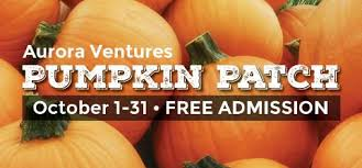 San Jose Pumpkin Patch 2017 by Patch Alameda County Fair Pleasanton From 8 To 14 October