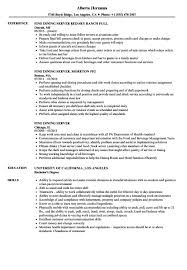 Fine Dining Server Resume Summary Examples 1