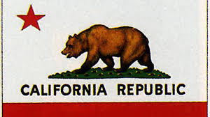The Dark History Of California Bear Flag An Interview With Alex