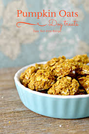 Dog Constipation Pumpkin by Easy Hypoallergenic Dog Treat Recipe Pumpkin And Oats