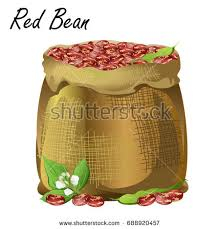 Sack Of Red Beans Hand Drawn Realistic Vector Illustration Jute With Common