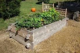 raised garden beds raised bed gardening