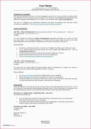 100 Great Looking Resumes A Resume Writing A Resume Awesome Ses Resume Examples