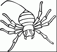 Excellent Printable Spider Coloring Pages With Page And