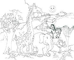 805x647 Wild Animal Coloring Pages Rabbit