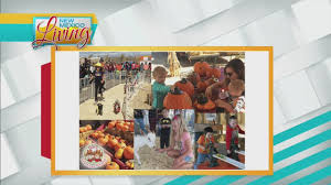 Mccalls Pumpkin Patch Albuquerque Nm by Abq To Do October 13th Youtube
