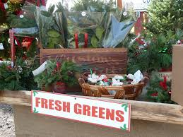 Dillards Christmas Tree Farm by 100 Merry Christmas Tree Farm Champagne Stained Days A Trip