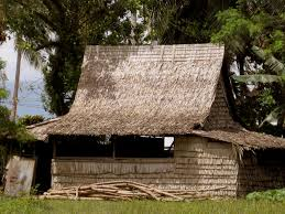 100 The Leaf House Ian MacNeill Architecture Of Solomon Islands