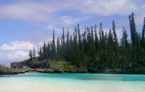 100 Le Pines Isle Of Travel Guide At Wikivoyage