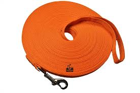 Amazon.com : Long Dog Puppy Obedience Recall Training Agility Lead ... Do Female Dogs Get Periods How Often And Long Does The Period Dsc3763jpg The Best Retractable Dog Leash In 2017 Top 5 Leashes Compared Please Fence Me In Westward Ho To Seattle Traing Talk Teaching Your Come When Called Steemit For Outside December Pet Collars Chains At Ace Hdware Biglarge Reviews Buyers Guide Amazoncom 10 Foot With Padded Handle For Itt A Long Term Version Of I Found A Rabbit Wat Do