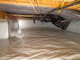 Fix Squeaky Floors From Basement by Squeaky Floors Houses Flooring Picture Ideas Blogule