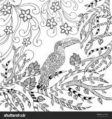 Neoteric Design Toucan Animal Coloring Pages Page Animals Hand Drawn Doodle Ethnic Patterned Illustration African